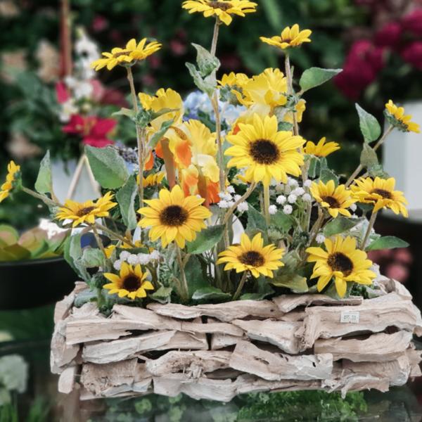 Sunflowers in wide basket